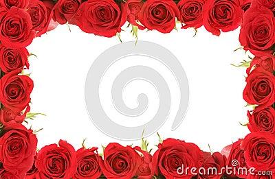 Tarjeta del día de San Valentín o rosas rojas del aniversario enmarcadas