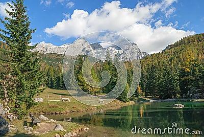 Tarn,Filzmoos,Austria
