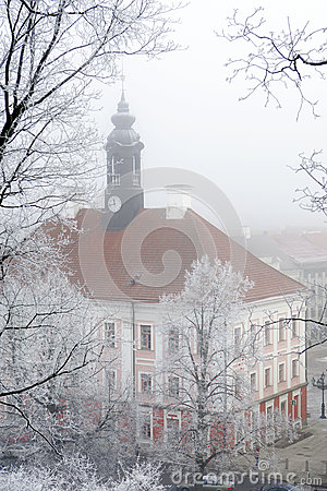 Tartu town hall in winter fog