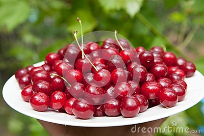 Tasty cherries