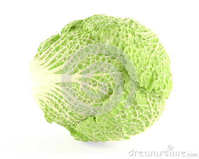 Tasty Chinese cabbage isolated