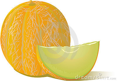 Tasty melon vector icon for print, windows, site