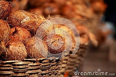 Tasty organic coconuts