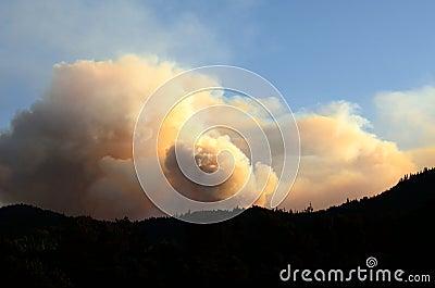 Tata zatoczki ogień