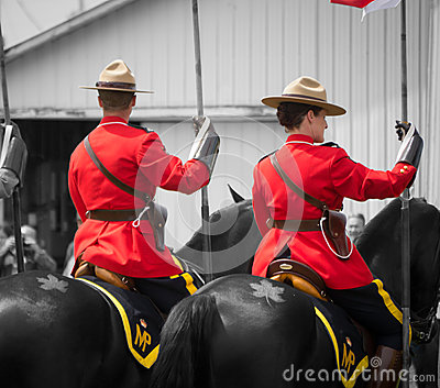 Tatouage de RCMP, de chevaux et de feuille d érable Image stock éditorial