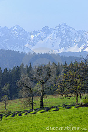 Free Tatra Mountains As Seen From Bukowina Royalty Free Stock Photography - 9304787