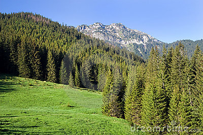Tatra Mountains Scenery