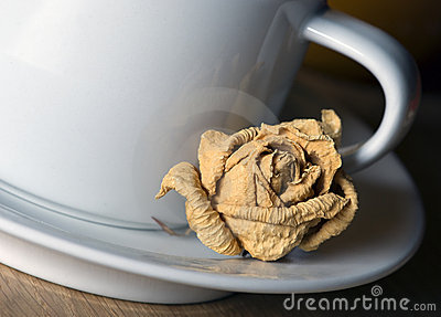 Tea cup with rose