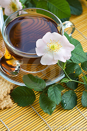 Tea with dog-rose