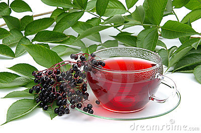 Tea elder 02