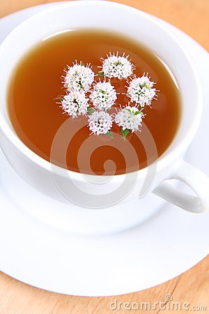 Tea with flowers of peppermint