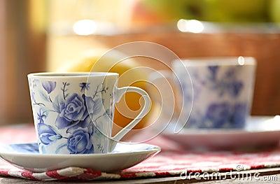 Tea and fruit  at picnic