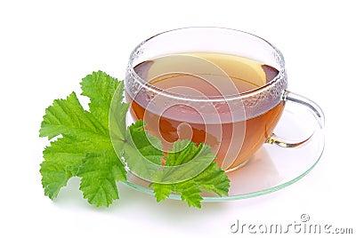 Tea malva