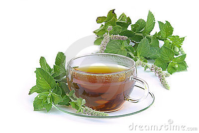 Tea Mentha citrata 02