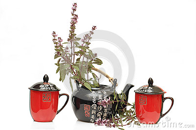 Tea-pot and herbal