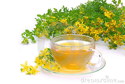 Tea St Johns wort