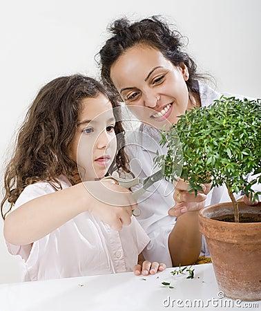 Teacher child plant