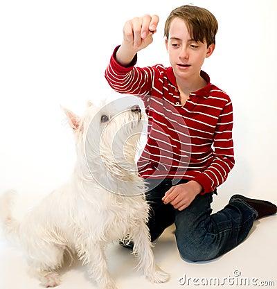 Teaching a dog new tricks