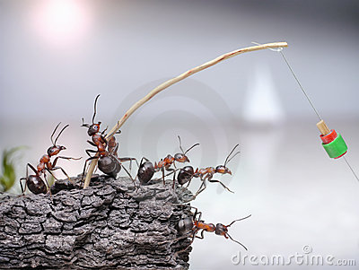 Team of anglers  ants fishing at sea, teamwork