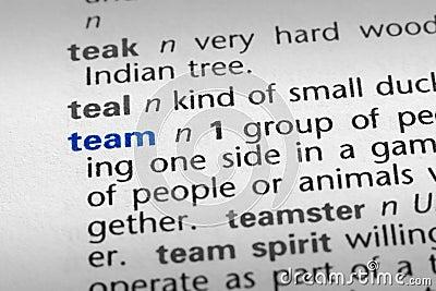 Team definition