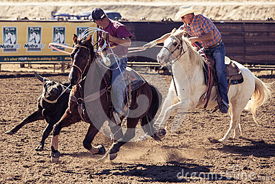 Team Roping in Wickenburg Editorial Photo