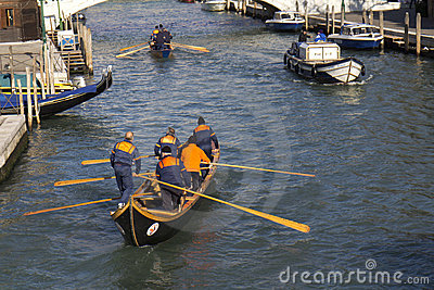 Teams of rowers (Venice) Editorial Stock Image