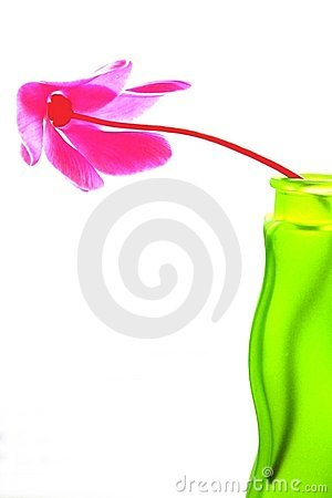 Free Teamwork In Green And Pink Royalty Free Stock Image - 301836