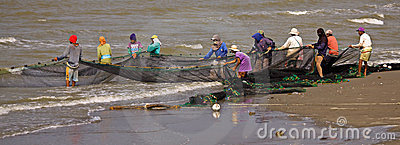 Teamwork Net Fishing Editorial Stock Image