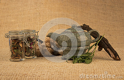 Teapot with herbs and roots