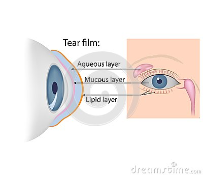 Tears chemical composition