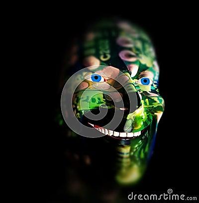 Tech Head 8