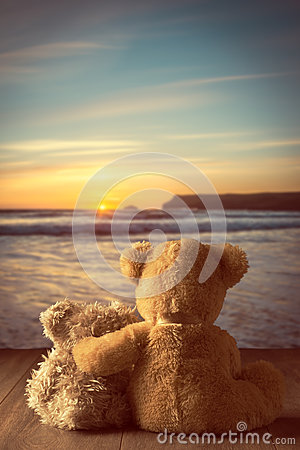 Free Teddies At Sunset Stock Photo - 55424580