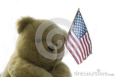 Teddy America