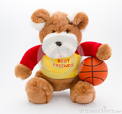Teddy and basketball ball
