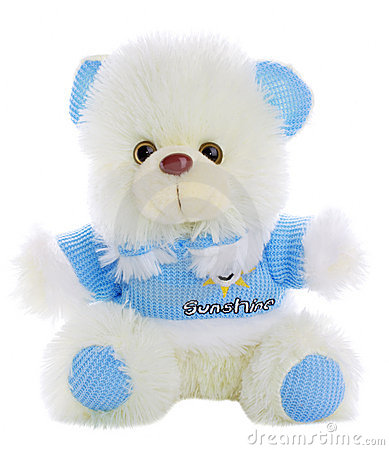 Free Teddy Bear Stock Images - 13037814