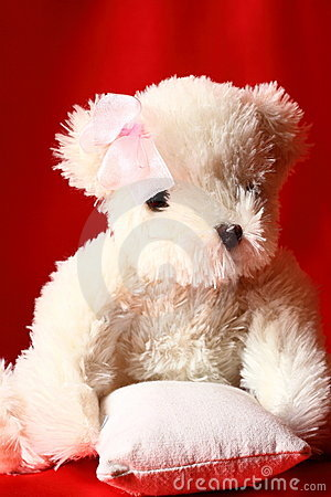 Teddy bear A