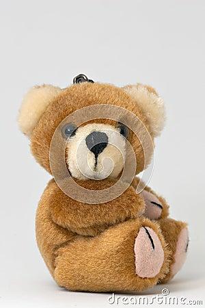 Free Teddy Bear Stock Photography - 542912