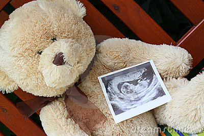 Teddy bear and baby ultrasound