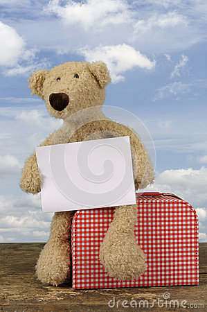 Teddy bear holding a destination card