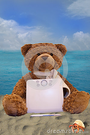 Teddy Bear Holding A Graphics Tablet