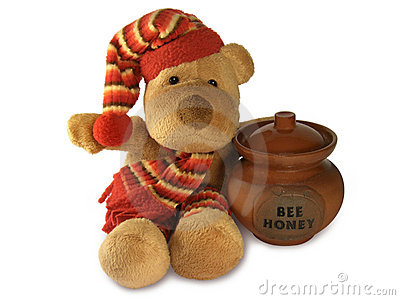 Teddy Bear with Honey Pot
