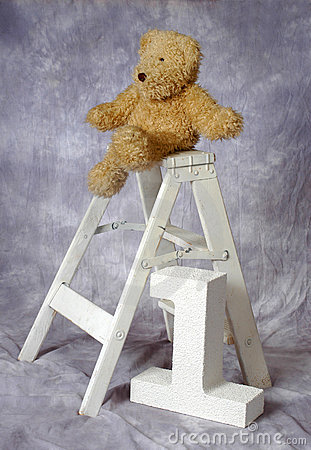 Teddy bear on ladder