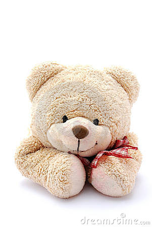 Free Teddy Bear Portrait Stock Photography - 8233112