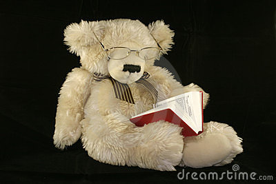 Teddy bear reading