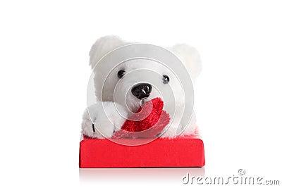 Teddy bear on a red giftbox