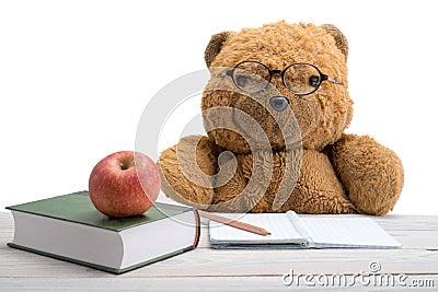 Teddy Bear in school