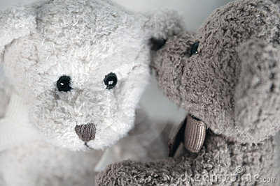Teddy Bear Secrets