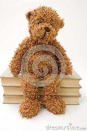 Teddy Bear Sitting on Books