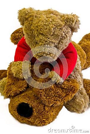 Teddy bear and stuffed dog