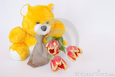 Teddy Bear with tie , tulip flowers - stock photos